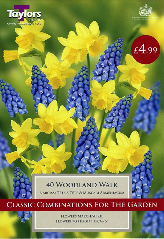 spring-flowering-bulbs-woodland-walk