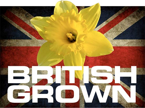 british-grown